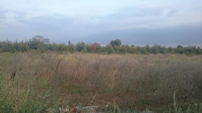 Osmangazi İsmetiye'de Acil Ana Yola Cepheli 2.700m2 Tarla