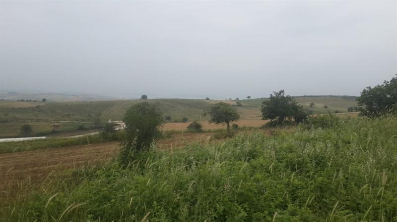 KARACABEY CAMBAZLAR'DA SATILIK 973 M2 TARLA